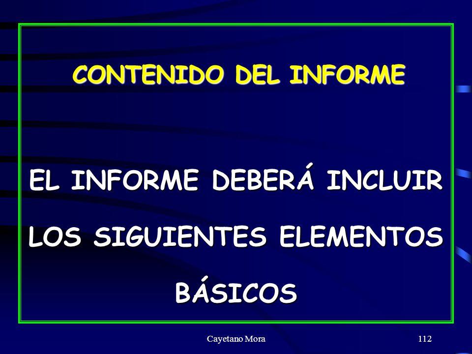 EL INFORME DEBERÁ INCLUIR LOS SIGUIENTES ELEMENTOS BÁSICOS