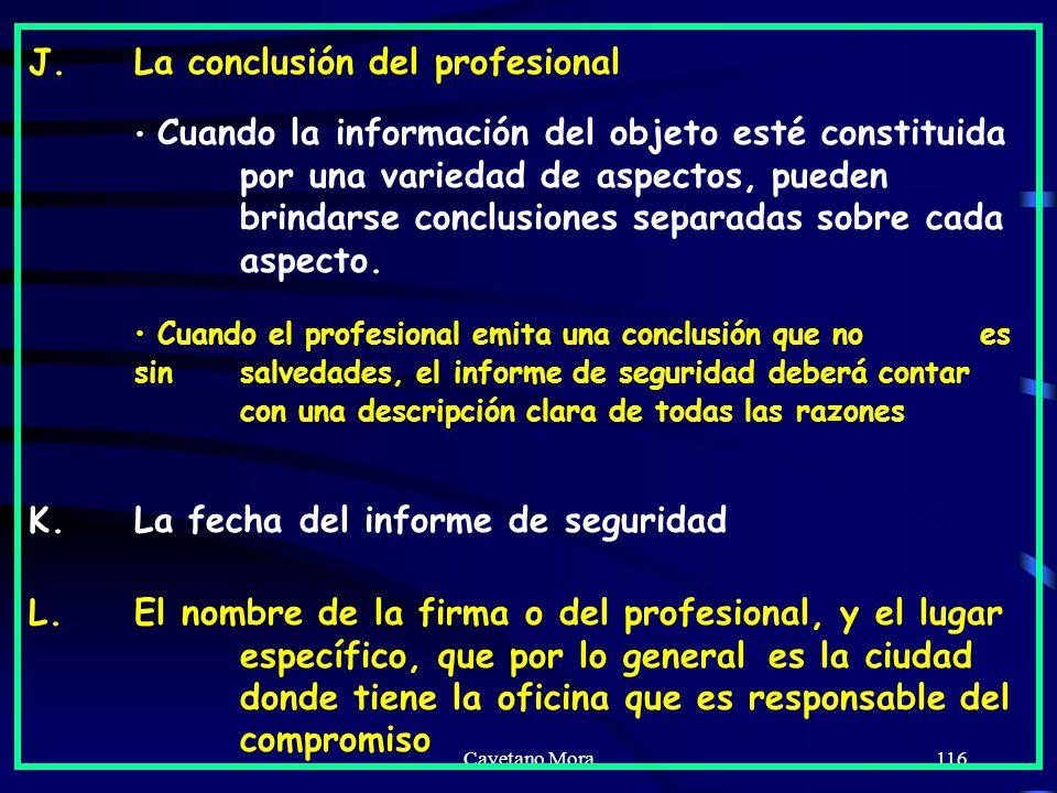 J. La conclusión del profesional