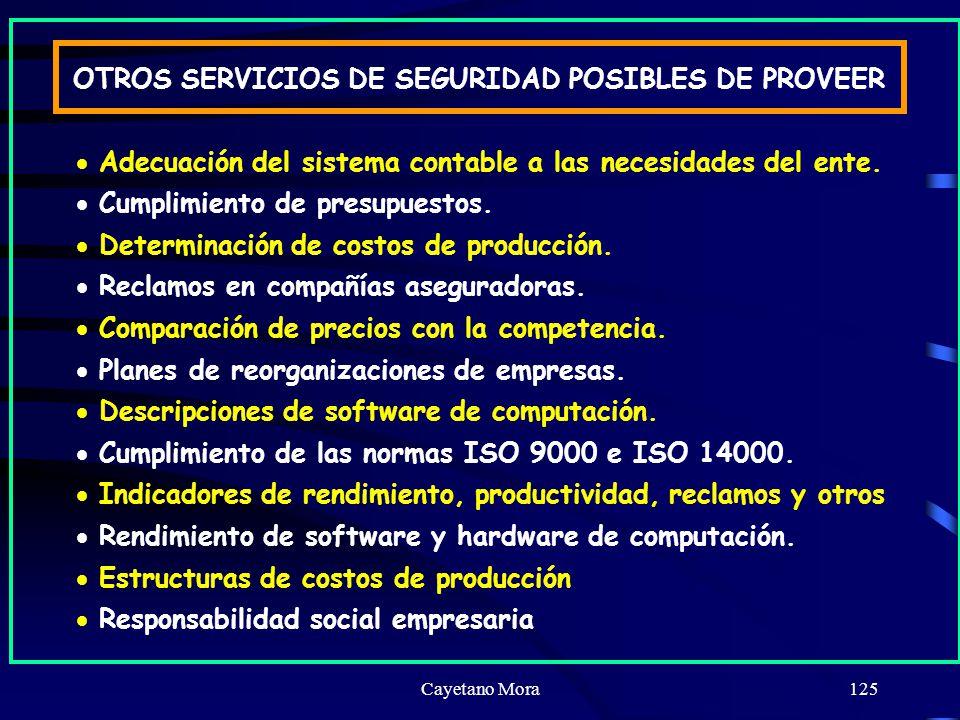 OTROS SERVICIOS DE SEGURIDAD POSIBLES DE PROVEER