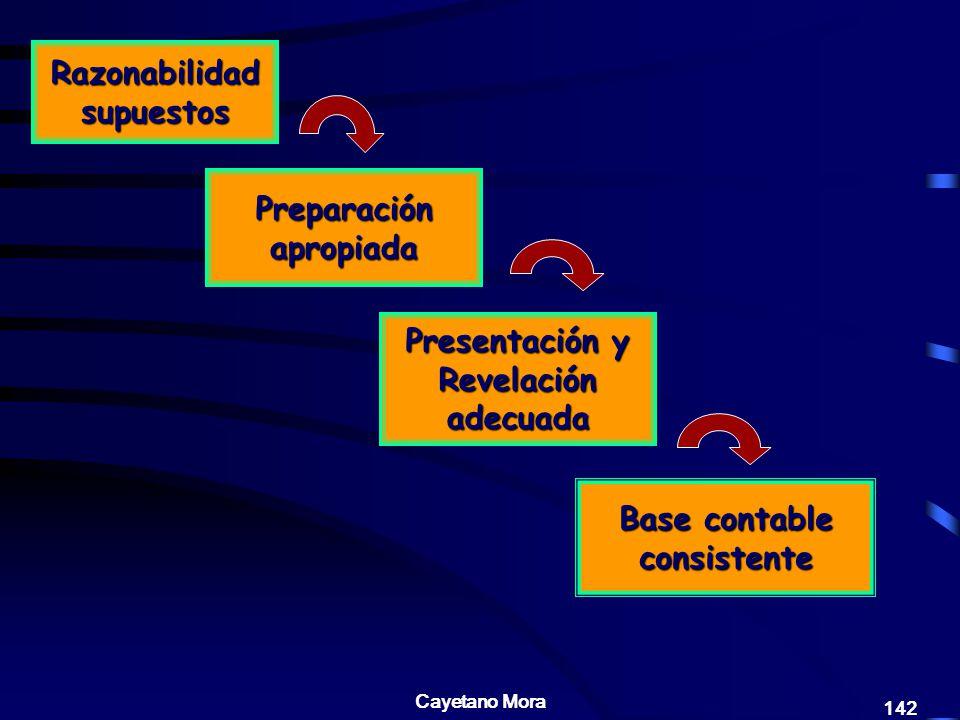 Razonabilidad supuestos Preparación apropiada Presentación y