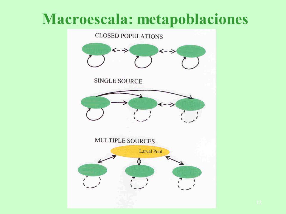Macroescala: metapoblaciones