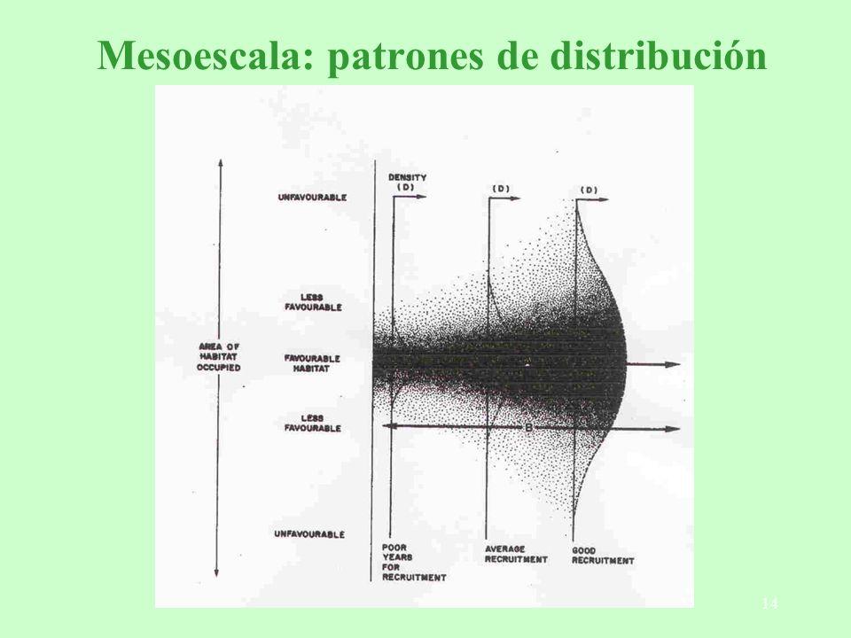 Mesoescala: patrones de distribución