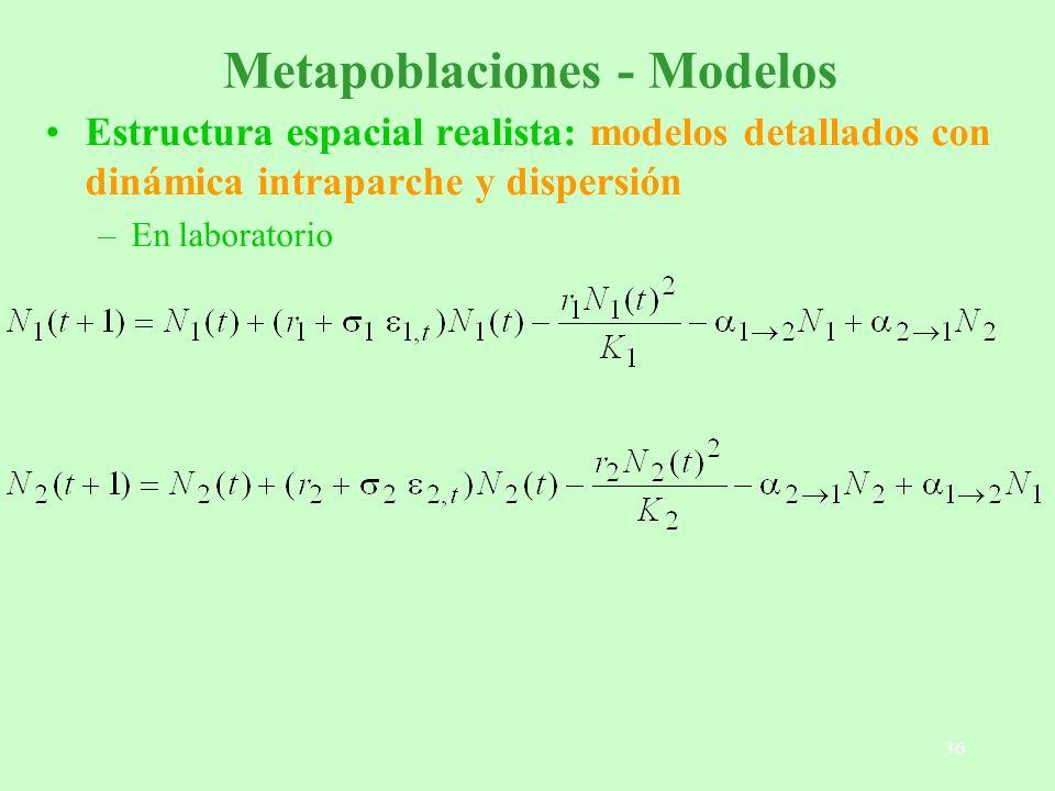 Metapoblaciones - Modelos