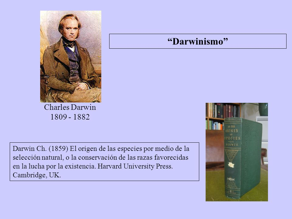 Darwinismo Charles Darwin 1809 - 1882