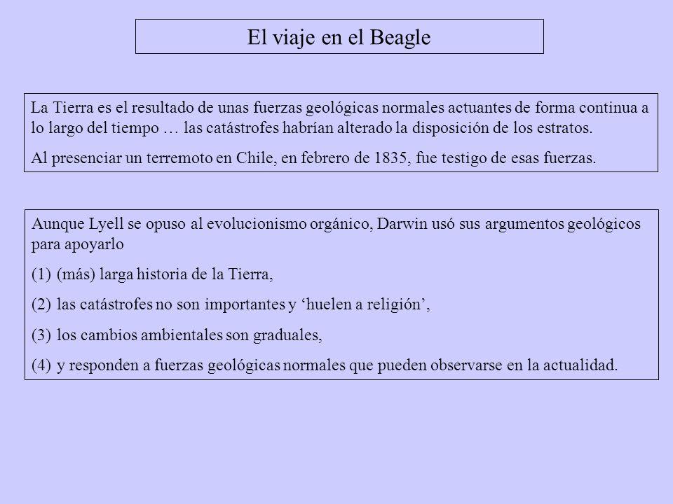 El viaje en el Beagle