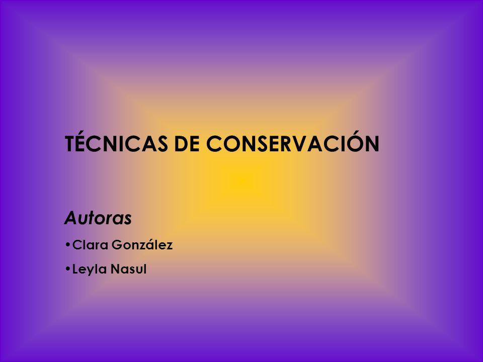 TÉCNICAS DE CONSERVACIÓN