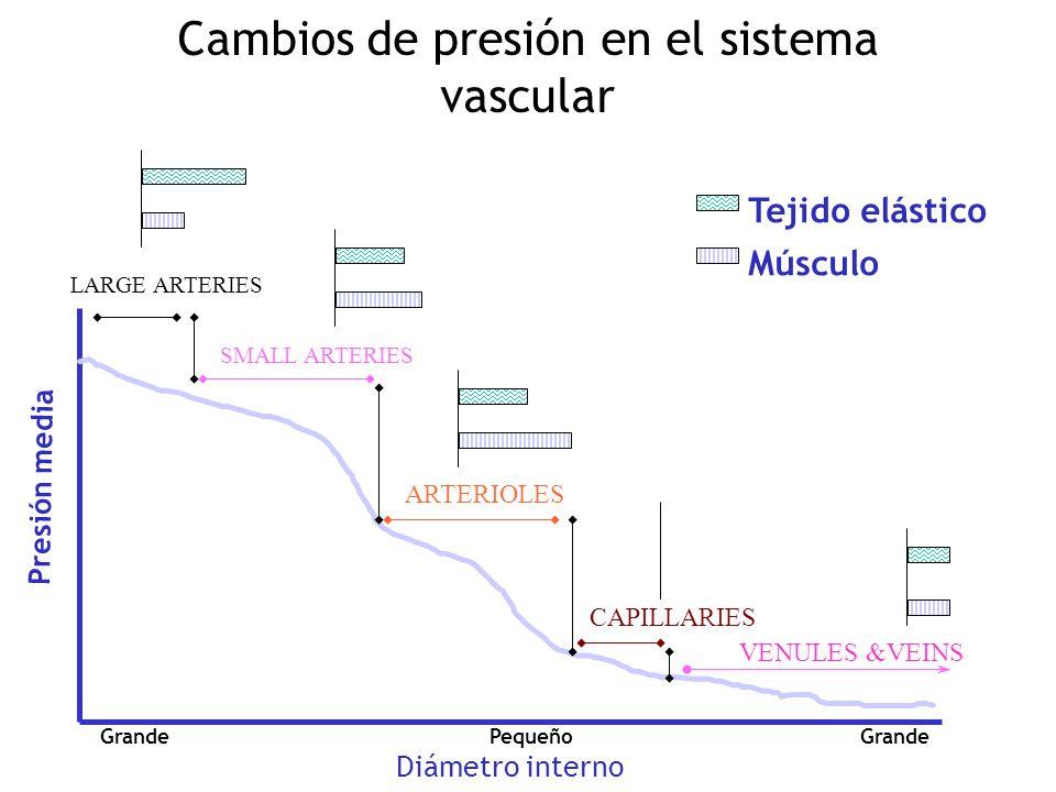 Cambios de presión en el sistema vascular