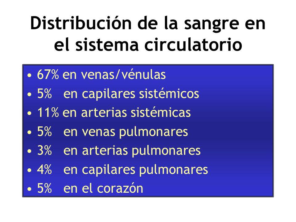 Distribución de la sangre en el sistema circulatorio