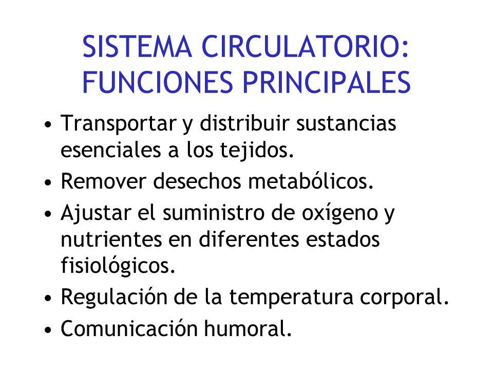 SISTEMA CIRCULATORIO: FUNCIONES PRINCIPALES