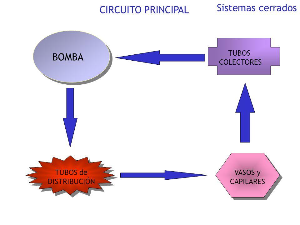 Sistemas cerrados CIRCUITO PRINCIPAL BOMBA TUBOS COLECTORES