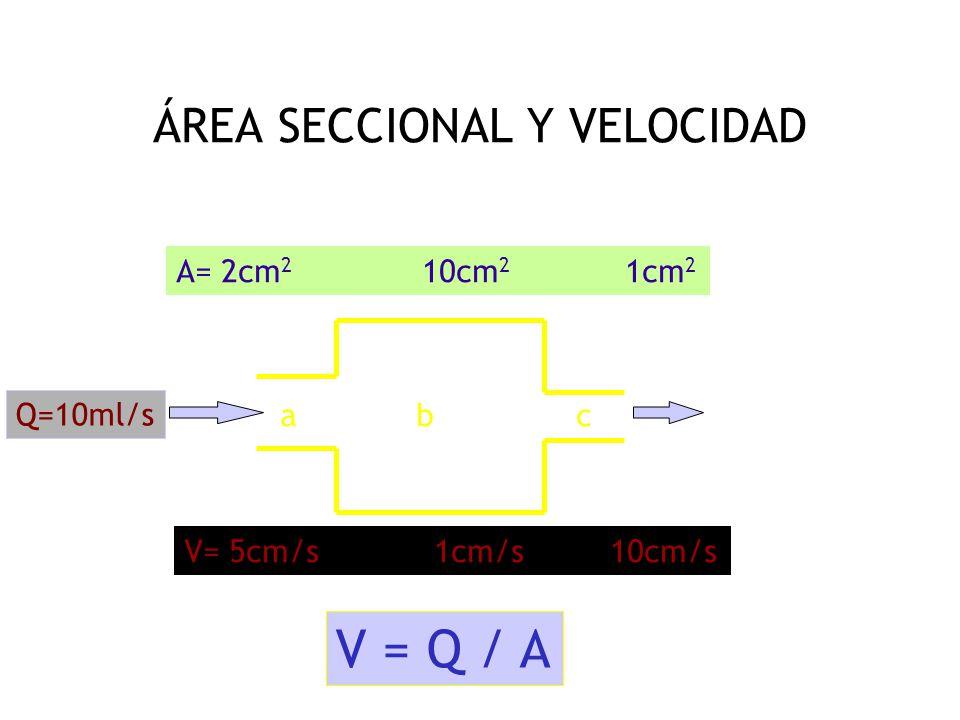 ÁREA SECCIONAL Y VELOCIDAD