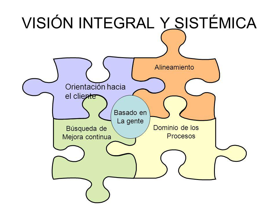 VISIÓN INTEGRAL Y SISTÉMICA