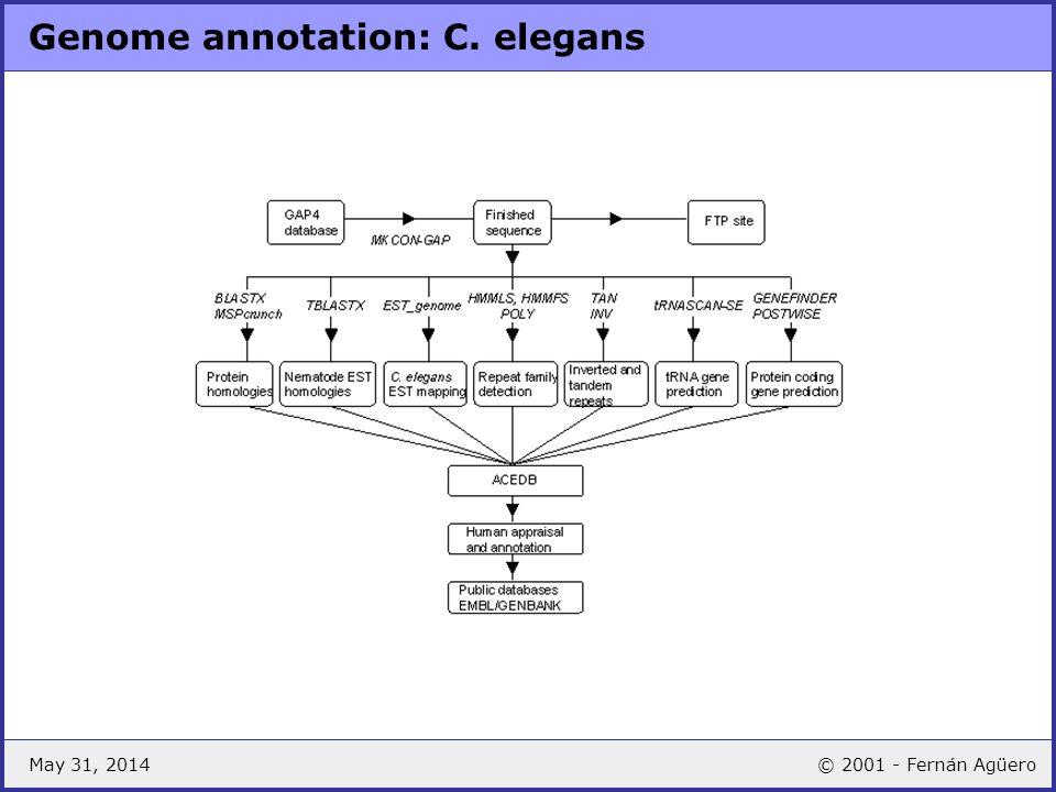 Genome annotation: C. elegans