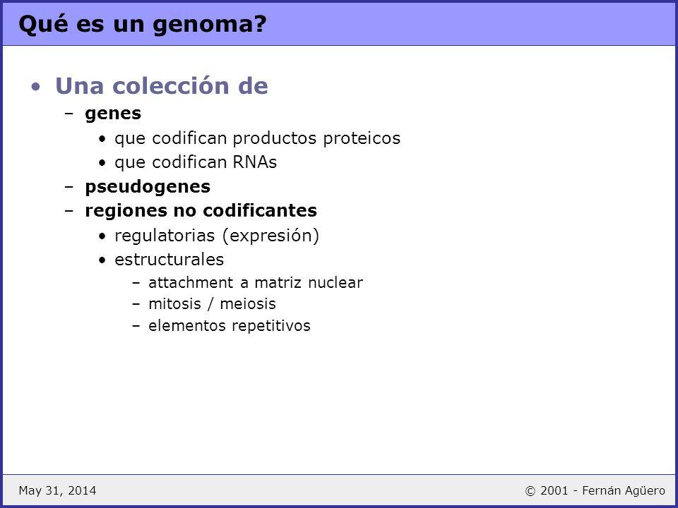 Qué es un genoma Una colección de genes