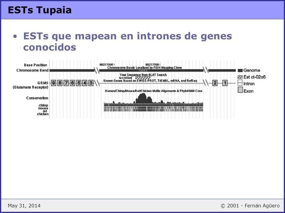 ESTs que mapean en intrones de genes conocidos