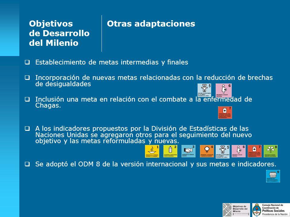 Objetivos de Desarrollo del Milenio Otras adaptaciones