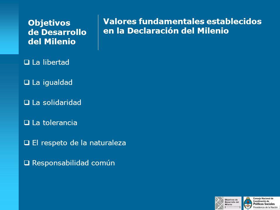 Valores fundamentales establecidos en la Declaración del Milenio