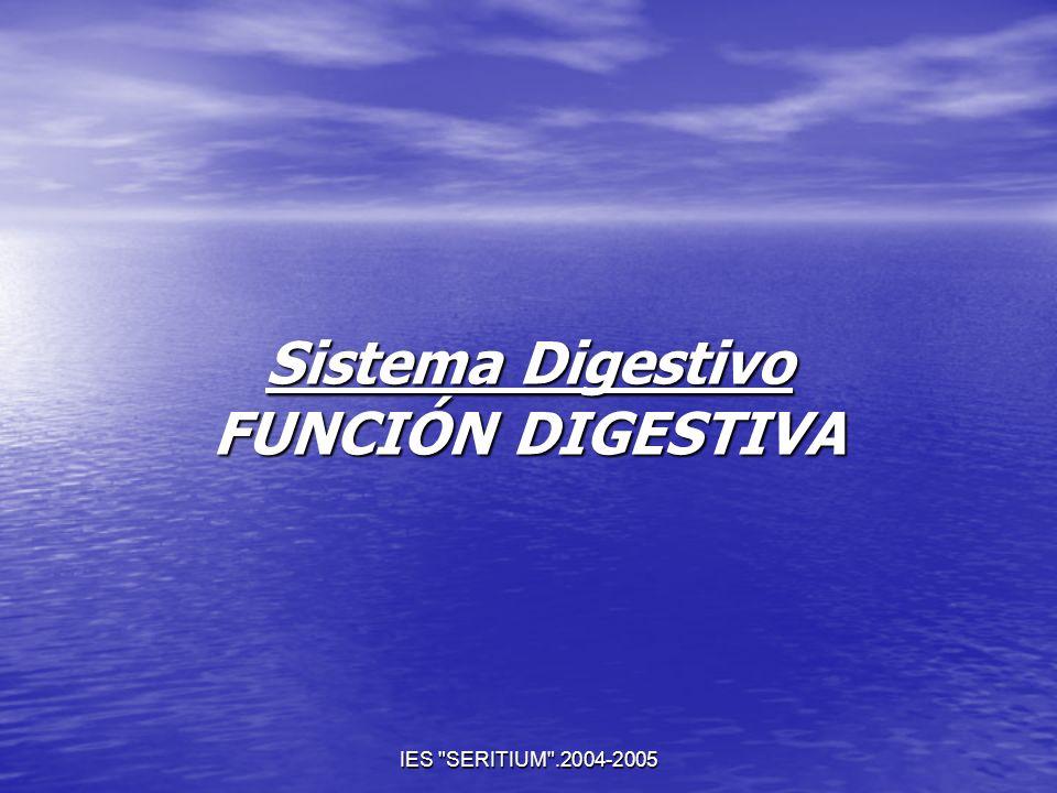 Sistema Digestivo FUNCIÓN DIGESTIVA
