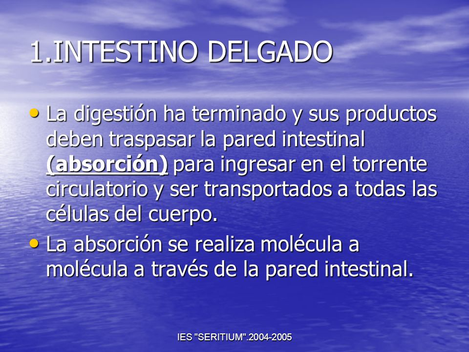 1.INTESTINO DELGADO