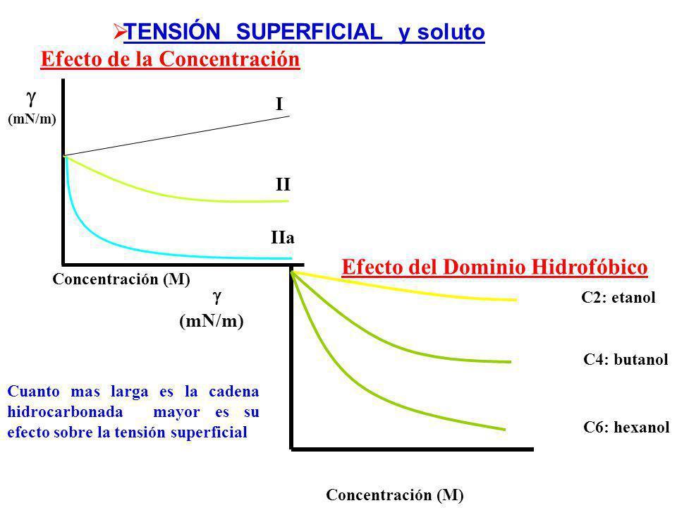  TENSIÓN SUPERFICIAL y soluto Efecto de la Concentración 