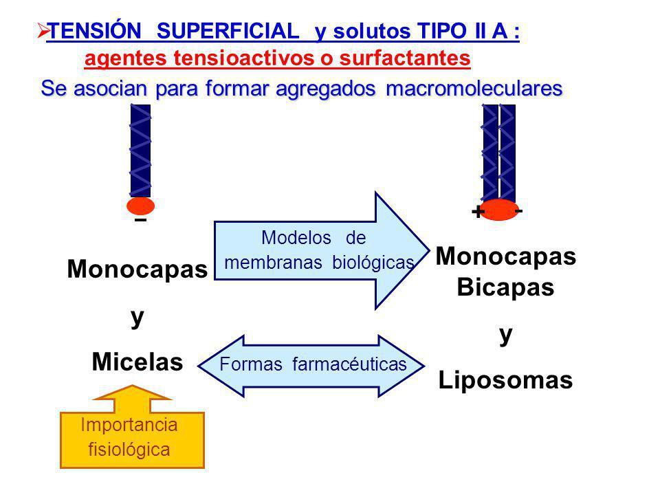 + Monocapas Bicapas y Liposomas Monocapas y Micelas