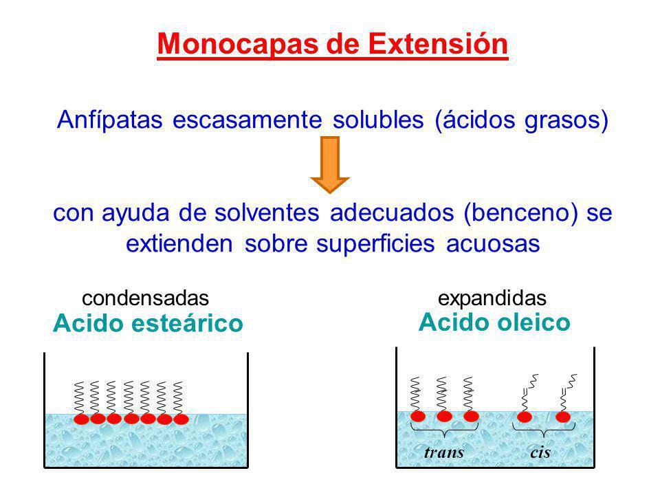 Monocapas de Extensión