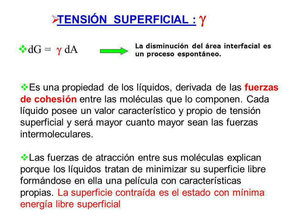 TENSIÓN SUPERFICIAL : 