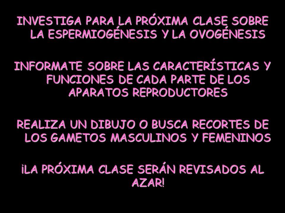 ¡LA PRÓXIMA CLASE SERÁN REVISADOS AL AZAR!