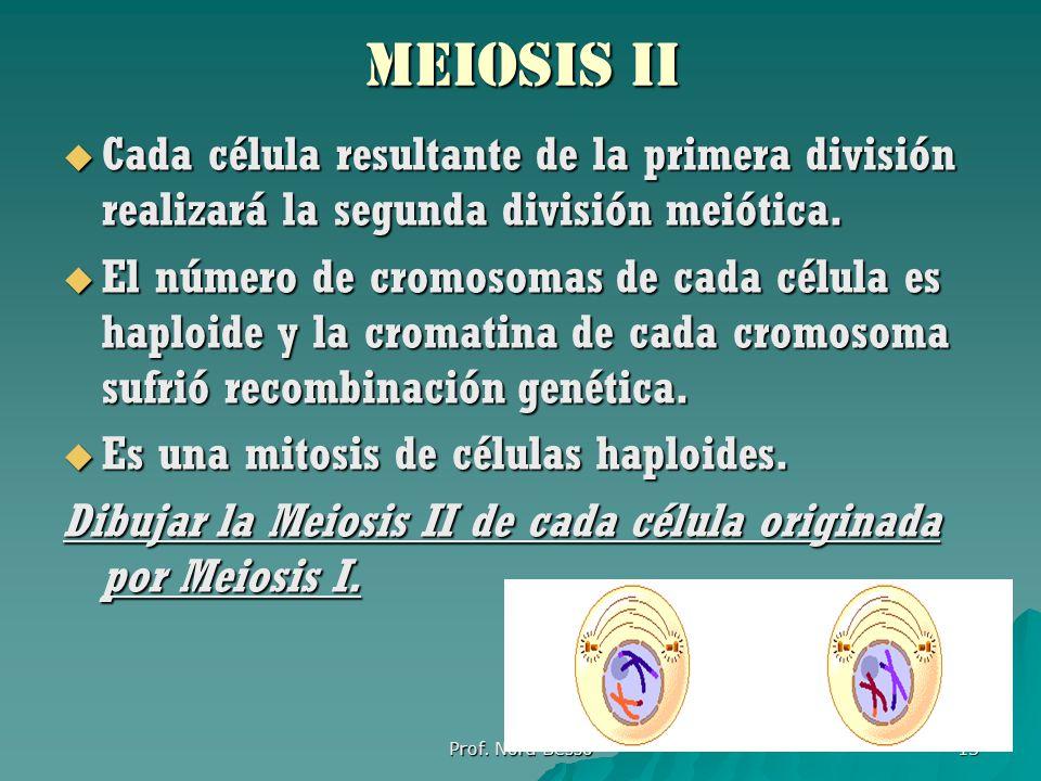 MEIOSIS ii Cada célula resultante de la primera división realizará la segunda división meiótica.
