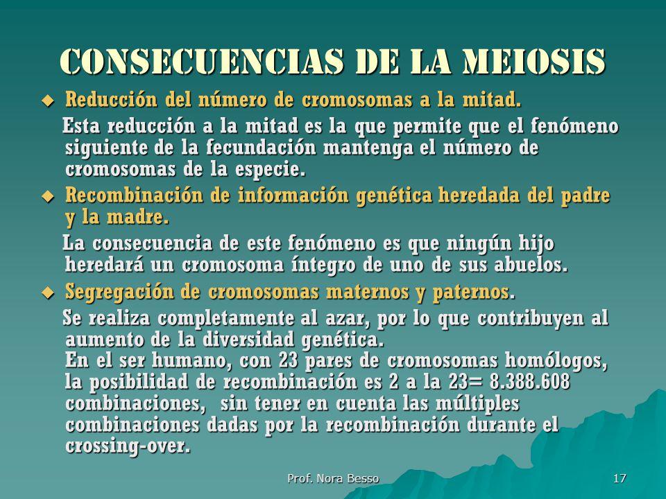Consecuencias de la meiosis