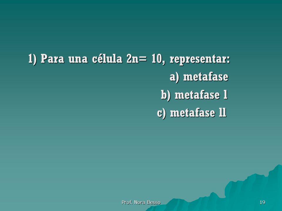 1) Para una célula 2n= 10, representar: a) metafase b) metafase l