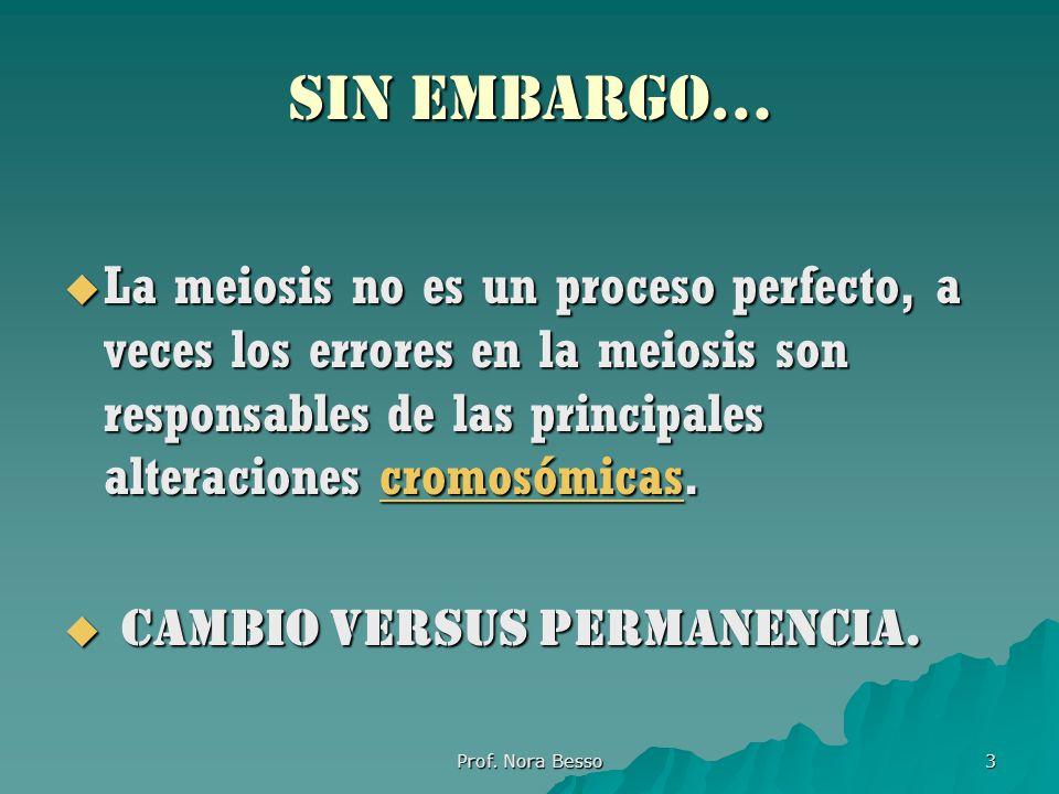 SIN EMBARGO… La meiosis no es un proceso perfecto, a veces los errores en la meiosis son responsables de las principales alteraciones cromosómicas.