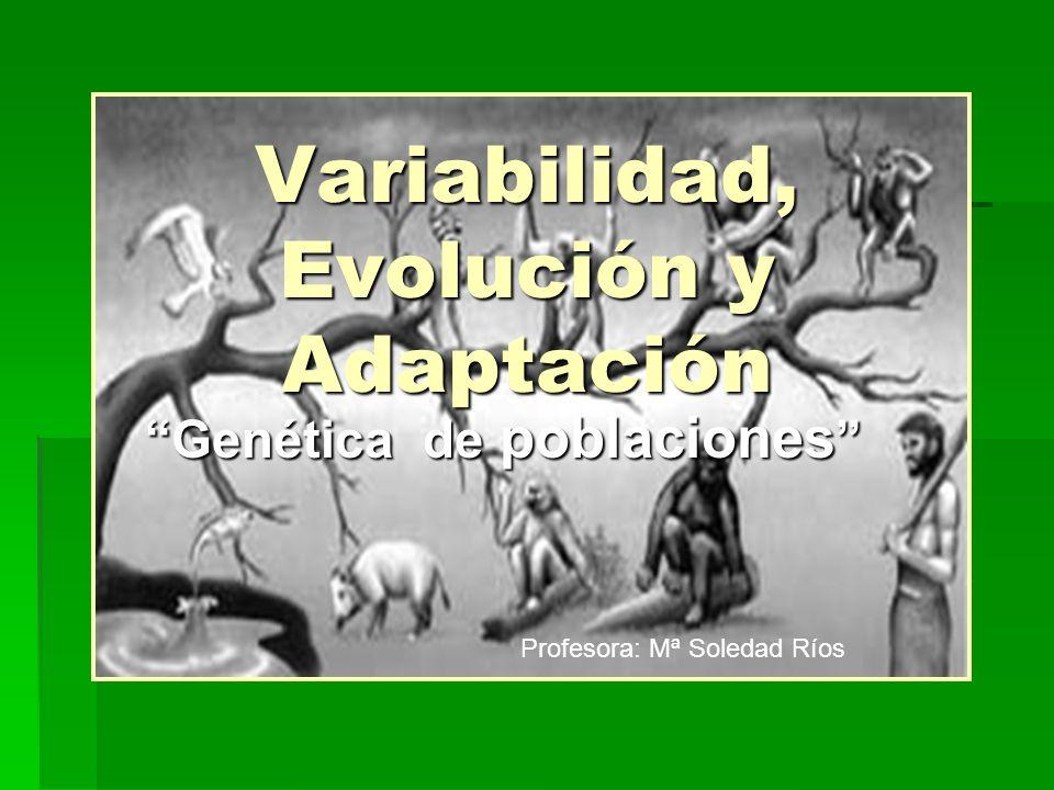 Variabilidad, Evolución y Adaptación