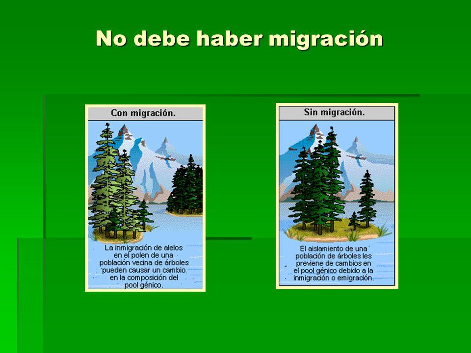 No debe haber migración
