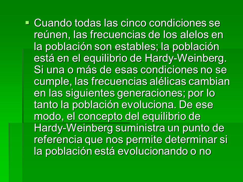 Cuando todas las cinco condiciones se reúnen, las frecuencias de los alelos en la población son estables; la población está en el equilibrio de Hardy-Weinberg.