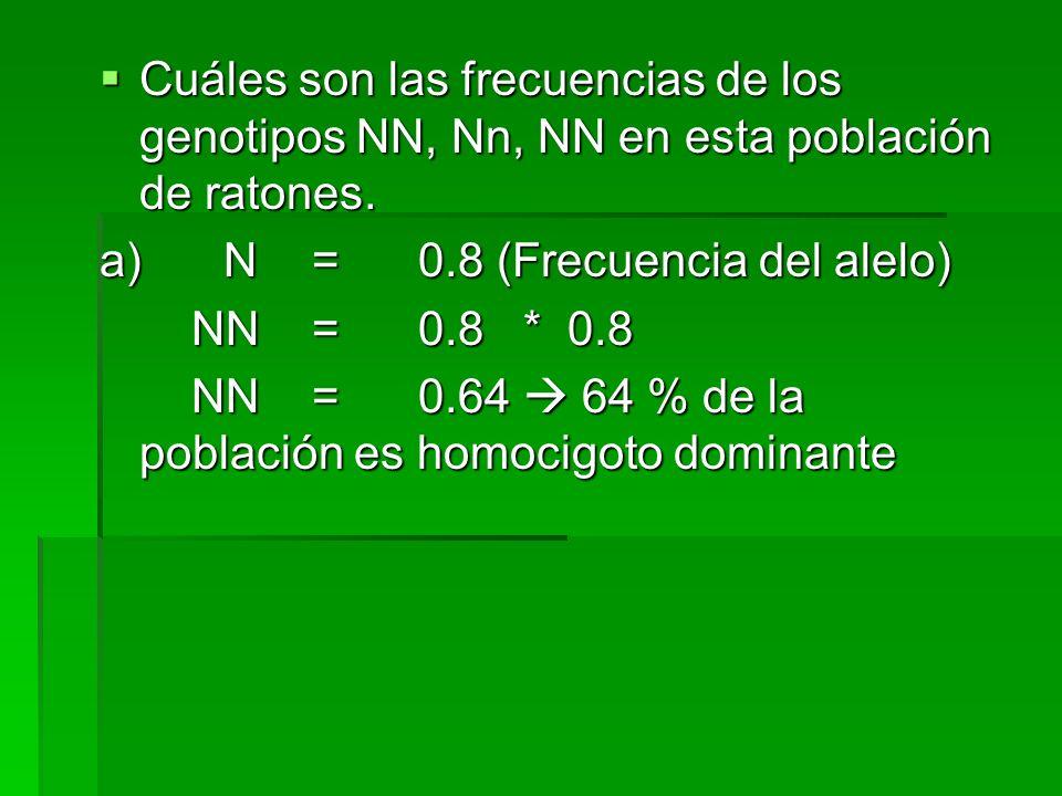 Cuáles son las frecuencias de los genotipos NN, Nn, NN en esta población de ratones.
