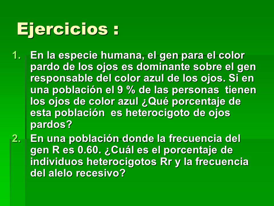 Ejercicios :