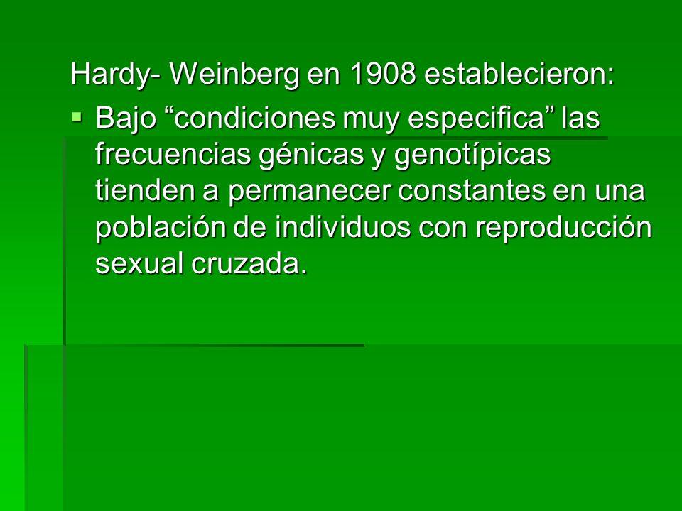 Hardy- Weinberg en 1908 establecieron: