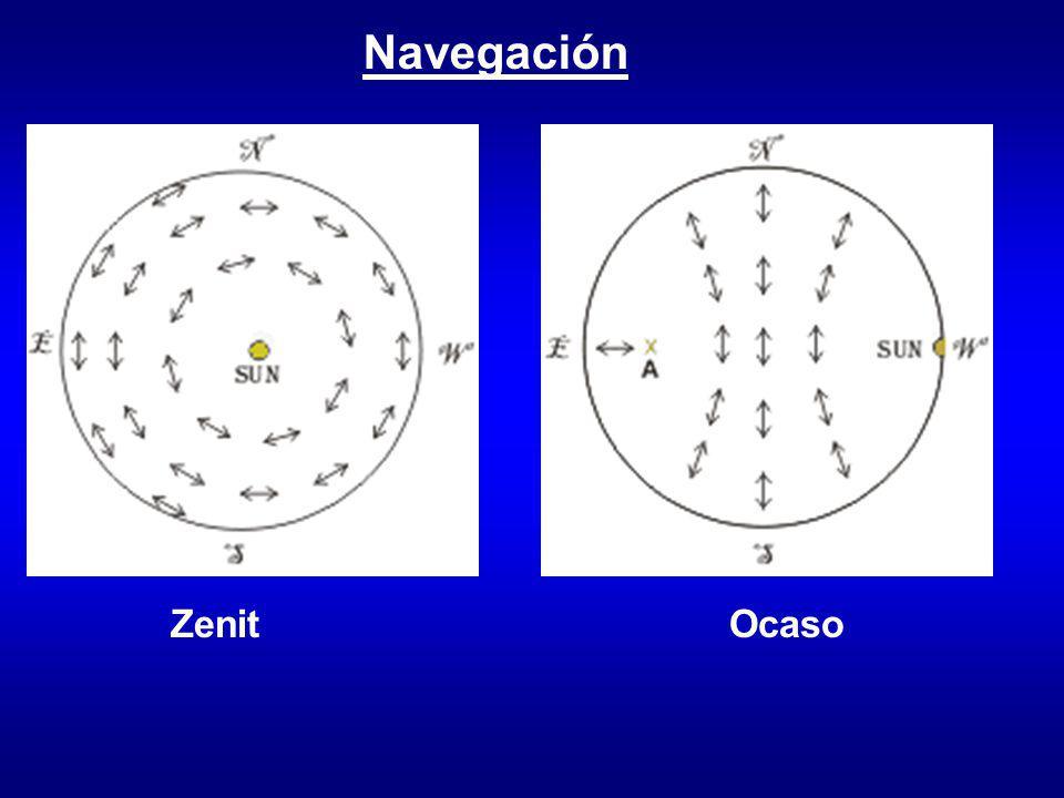 Navegación Zenit Ocaso