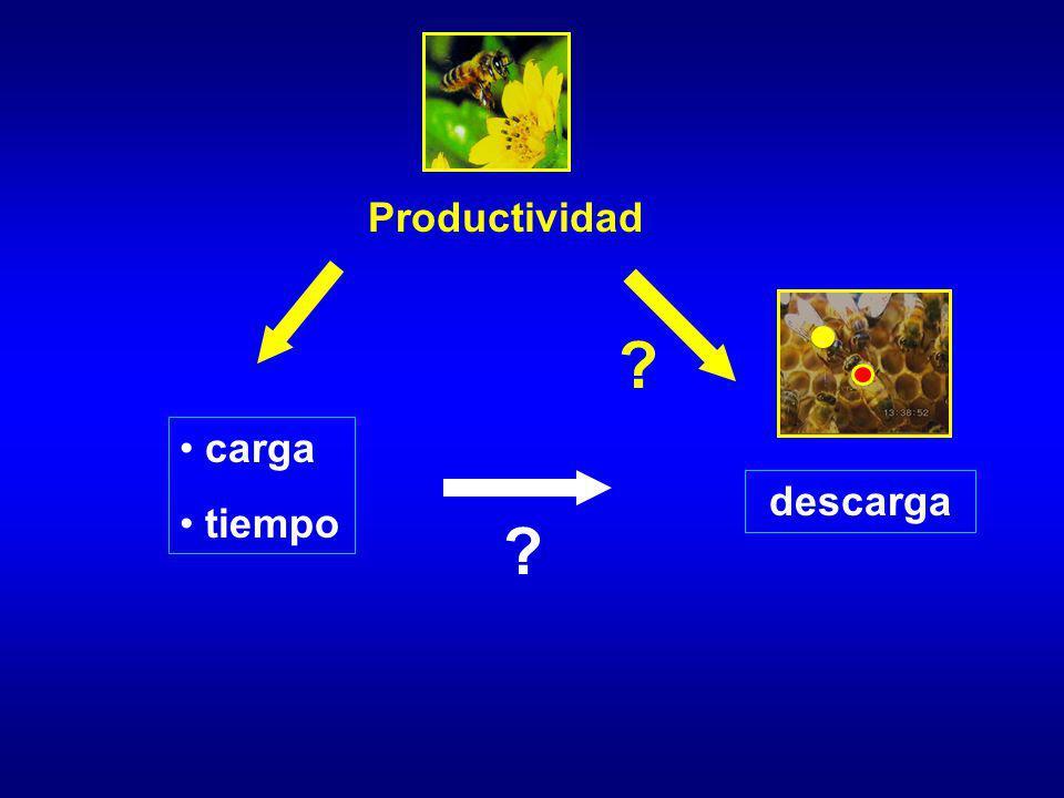 Productividad carga tiempo descarga