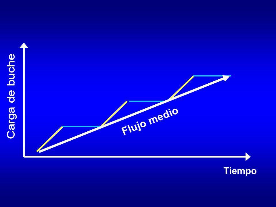 Tiempo Carga de buche Flujo medio