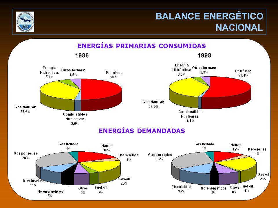 ENERGÍAS PRIMARIAS CONSUMIDAS