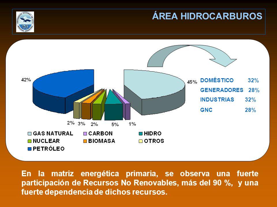 ÁREA HIDROCARBUROS DOMÉSTICO 32% GENERADORES 28% INDUSTRIAS 32% GNC 28%