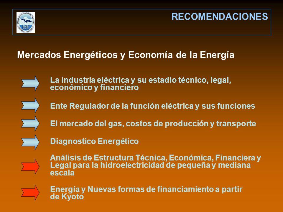 Mercados Energéticos y Economía de la Energía