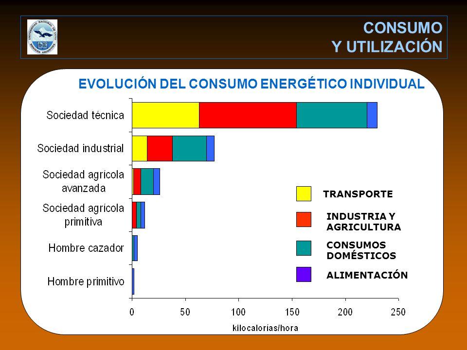 EVOLUCIÓN DEL CONSUMO ENERGÉTICO INDIVIDUAL