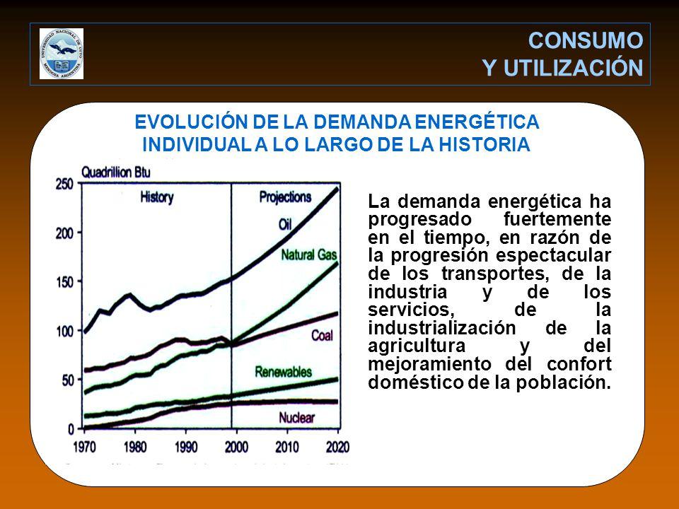 CONSUMO Y UTILIZACIÓN EVOLUCIÓN DE LA DEMANDA ENERGÉTICA INDIVIDUAL A LO LARGO DE LA HISTORIA.