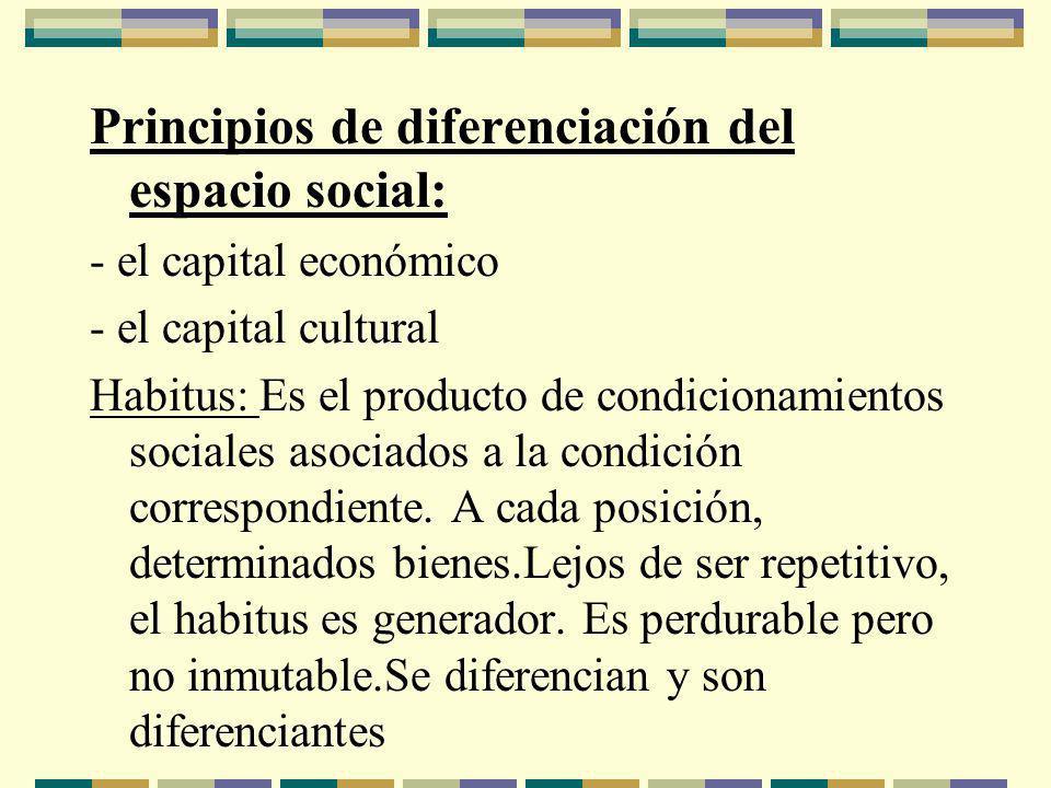 Principios de diferenciación del espacio social: