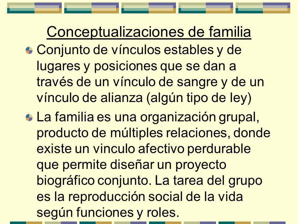 Conceptualizaciones de familia