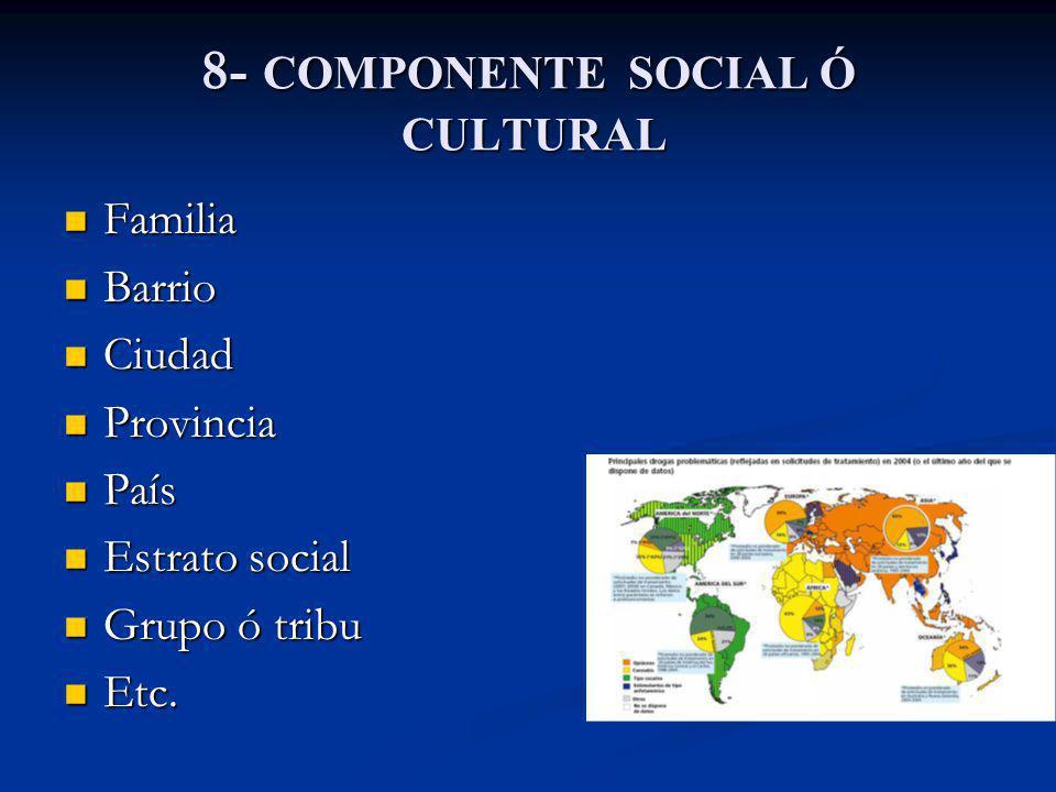 8- COMPONENTE SOCIAL Ó CULTURAL