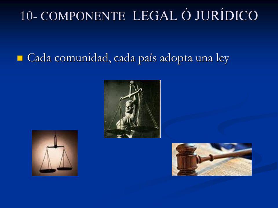10- COMPONENTE LEGAL Ó JURÍDICO